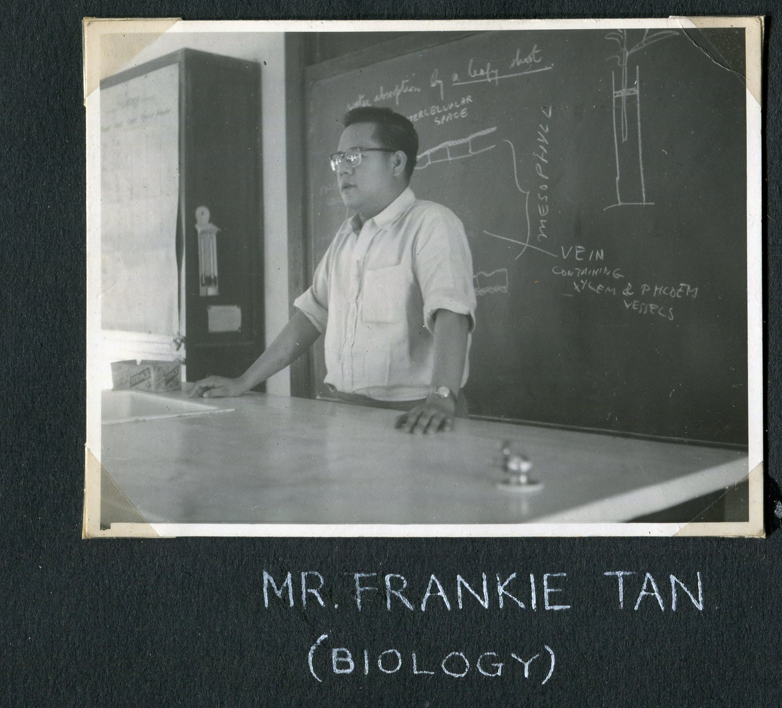 1955-Mr-Frankie-Tan