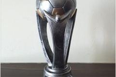 TPS FA Cup